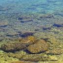 Kust, stenen in lager water.