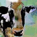 Koe, groene achtergrond. Donkere plekken.